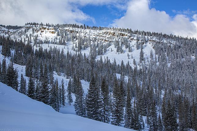 View From Gwyn's High Alpine