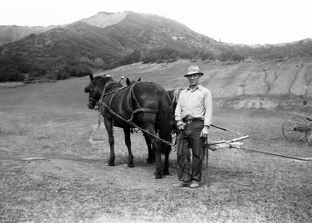 Roaring Fork Valley Rancher and his horse in the 1940's plowing fields getting ready to plant potatoes, and corn; Engel & Völkers Real Estate