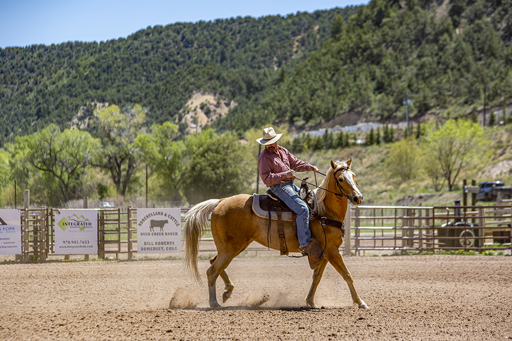A cowboy taking time to work with his horse in the Roaring Fork Valley; Engel & Völkers Real Estate