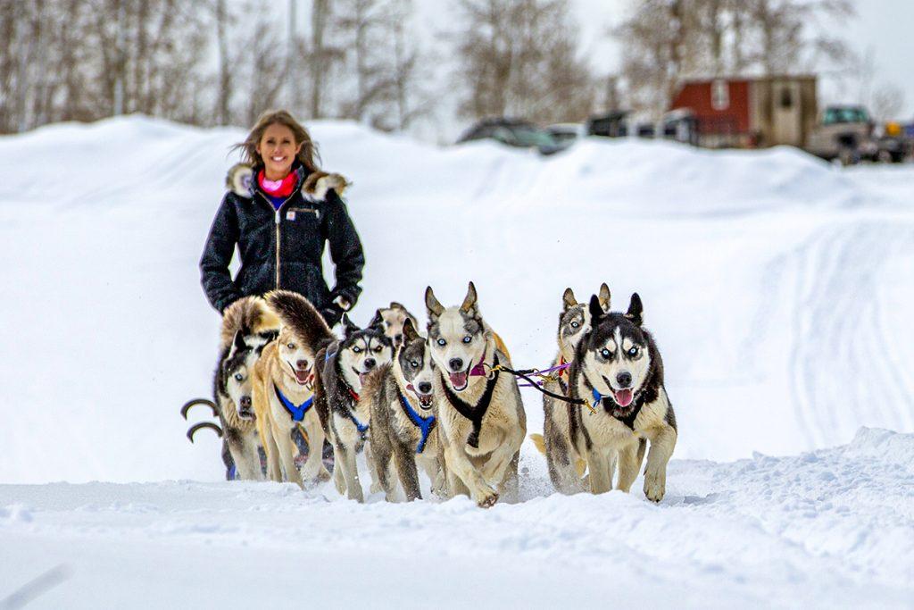 mushing through the snow Colorado lifestyle