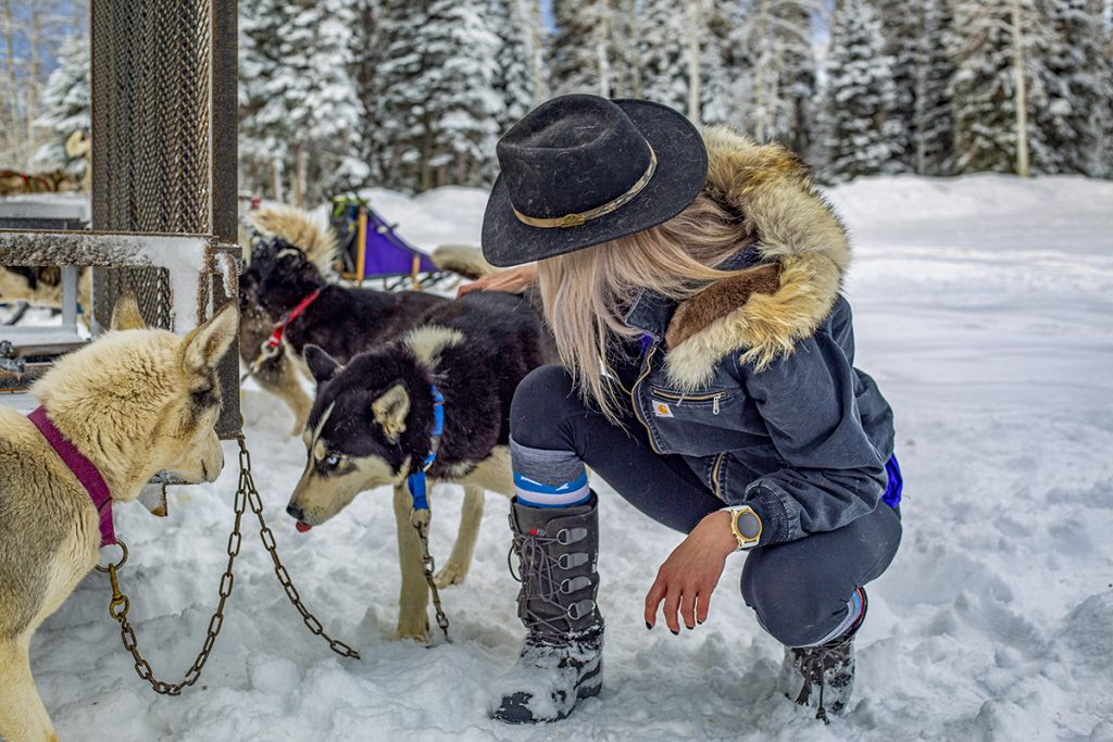 Kristin petting her dog sled team