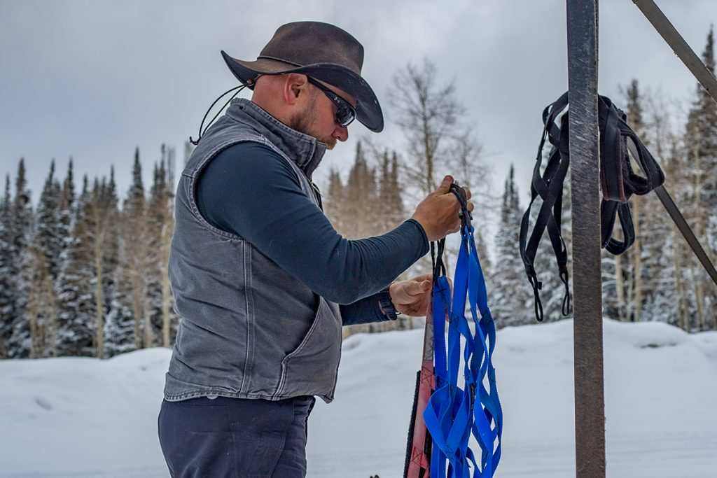 Ronny preparing dog sled harnesses for a Colorado lifestyle