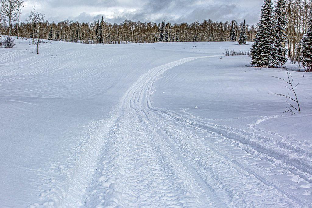 snow tracks on Buford flat tops