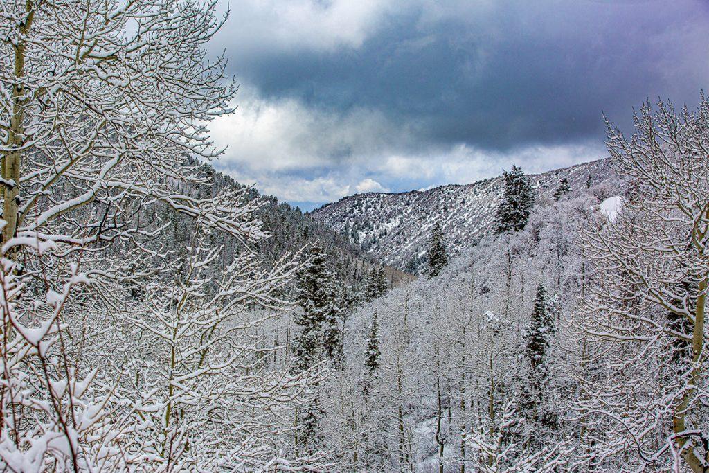 snow storm over Buford Colorado